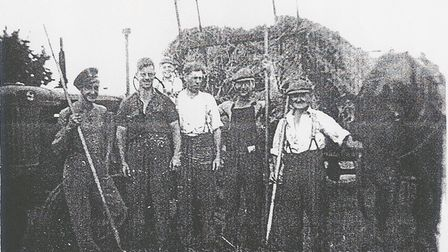 Harvest time: Left to right, Fred Bullett, Harry Cocksedge, Ray Rogers on the tractor, Ivan Rogers, Bill Davies and Herbie Bullett.