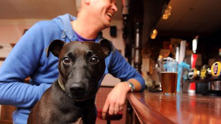 The Lacon Arms in Hemsby which has been voted the best dog friendly pub in the country as part of a