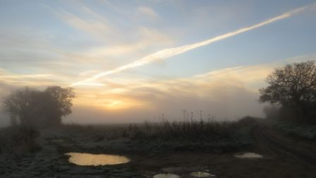 Minus 1, hard frost and drifting fog greeted us early this morning on the dog walk. Photo by Fay Nea