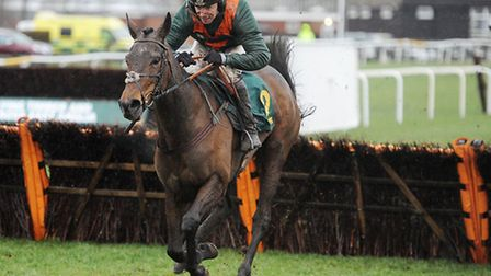 Mistral Reine was a winner over hurdles at Fakenham in February. The horse returns to the north Nor