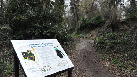 Danby Wood nature reserve, where improvements will be carried out due to funding from the Greater No