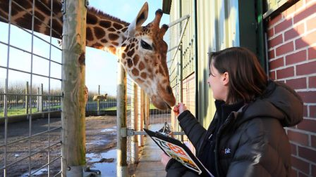 Banham Zoo are one of the three tourist attractions around the region which have launched a recruitm
