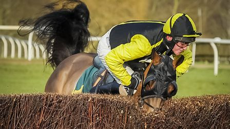 Action from the 22nd January meeting at Fakenham Races - 2.30 third race - Frontier Spirit nealy thr