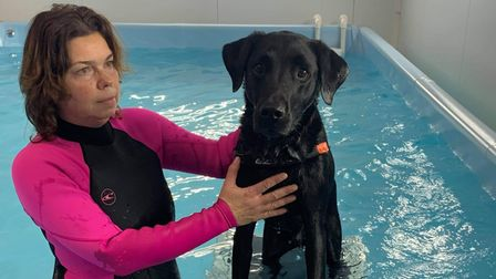 Stowmarket-based Synergy Small Animal Rehabilitation's facilities include a hydrotherapy pool