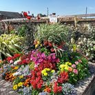 The Wedge is one of the key areas for Brandon in Bloom