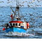 A fishing boat returning to port at Great Yarmouth after a day out on the North Sea. Photo: Chris Ra