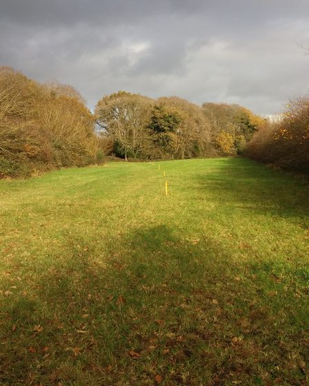The section of land atHigh Kelling which theMelton Constable Trust plans to buy for the Norfolk Orbital Railway...