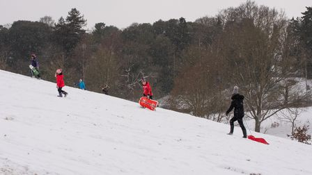People headed out to the slopes in Christchurch Park for some early sledging. Picture: Sarah Lucy B