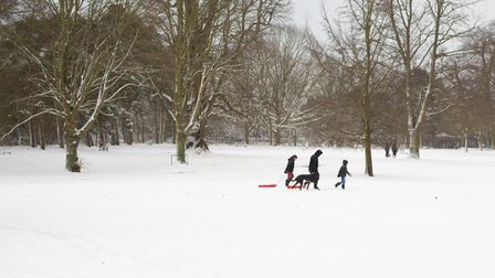 Christchurch Park was covered in a blanket of white after snow fell overnight. Picture: Sarah Lucy