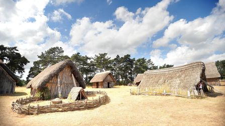 40 year anniversary since the work of the Environmental Archaeology Group at West Stow Anglo-Saxon V