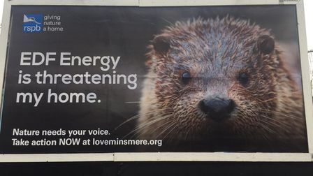 One of the RSPB's new billboards