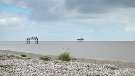 GALLERY: Sizewell beach on a cloudy day in May.