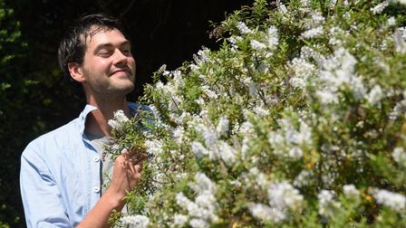 Head gardener Sam Garland with the Hebe plant, grown from a cutting from Queen Victoria's wedding bo
