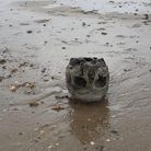 A human skull was found on the beach at Little Oakley
