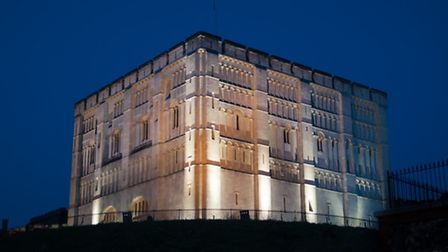 Norwich Castle Museum. Top jobs in the museum service are at risk because of a review.
