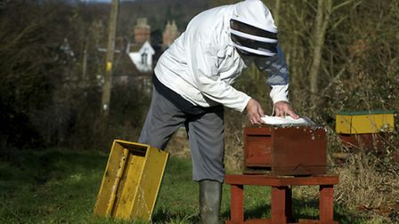Beekeeper Barry Walker-Moore with some of his beehives in Southrepps.Photo by Mark Bullimore