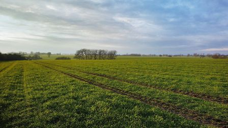 Barford Farm in Topcroft, south Norfolk, is being sold with a guide price of £8.5m.