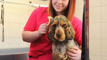 Zoe Stone has set up her own dog grooming business in her parents garage which has been converted in
