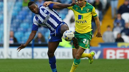 Gary ONeil has high hopes for Norwich City once the current international break finishes. Picture by
