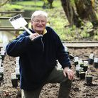 Fairhaven Woodland and Water Garden's 40th anniversary year. The restoration of the West Garden.The