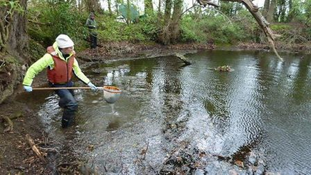 Norfolk Ponds Project. Pictured: Helen Greaves.
