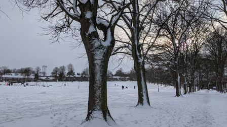 Snow covered the park for a full week before spring sunshine began to break through and melt the ice