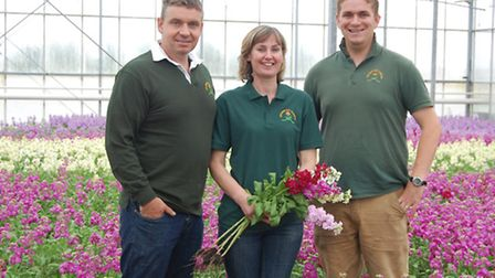 The Collison family in one of their glasshouses near King's Lynn. Picture: submitted