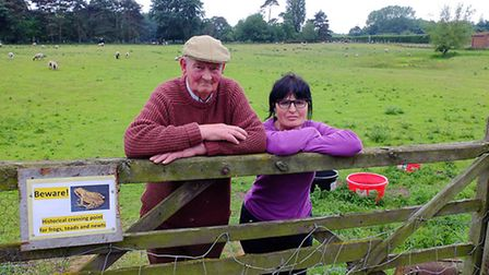 Mike and Marianna Vawser, who are opposing plans to develop the field where they keep their sheep in