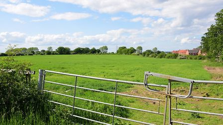 Land at Cringleford next to the A11 where new homes could be built.Picture by SIMON FINLAY.