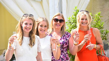 Summer fun and action at the Langley Polo Festival.Picture by SIMON FINLAY.