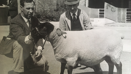 Bill James, left, of Winston Hall, and Vic Green with a Suffolk Sheep