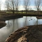 The River Stour at Bures has been reprofiled to promote wildlife