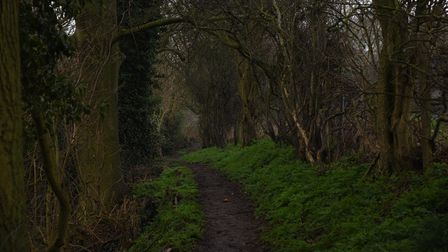 The wild man of Sproughton, Suffolk Picture: CHARLOTTE BOND