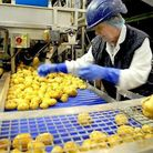 Kettle Chips being made in Bowthorpe, Norwich