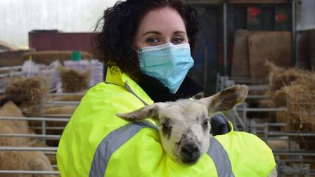 Land-based director at Suffolk RuralLynsey Wilson with Holly the lamb