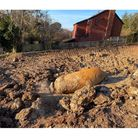 The World War Two bomb found in Exeter.