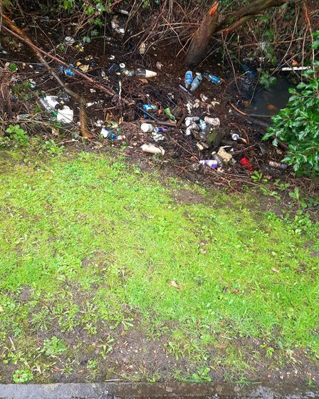 Littering on Safari Way in Dereham will be discussed at a town council meeting next week