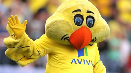 Norwich City mascot Captain Canary isn't in our photo quiz, but can you guess 20 of his colleagues f