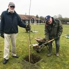 Don Watling and Keith Ingram working on the Centenary Orchard at Dunmow Bowling Club
