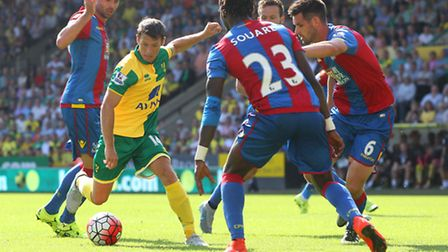 Wes Hoolahan has been one of the cornerstones of Norwich Citys Premier League campaign so far.