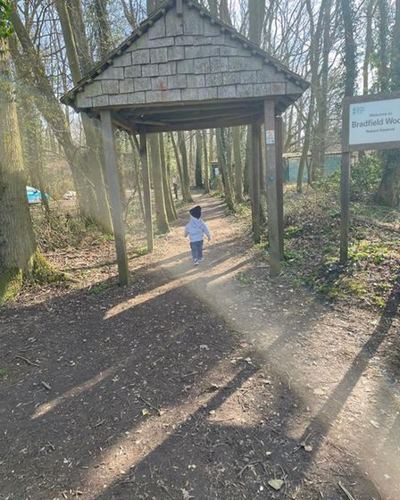 Toddler wearing a hat walking under a gate into woodland