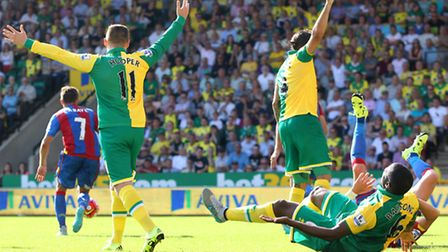 Sebastien Bassong was convinced he should have a had a late penalty in Norwich City's 3-1 Premier Le