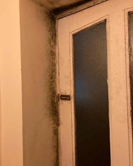 Chronic mould at Naomi Sutherland's flat in the Nelson Ward