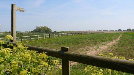 A footpath in the East Anglian countryside