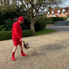 Brooke postman Kevin Keeler being confronted by the angry pheasant during his round on April 1