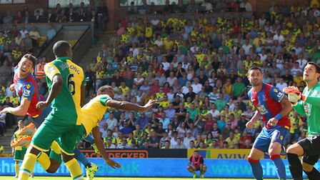 Cameron Jerome's second half finish in Norwich City's 3-1 Premier League defeat to Crystal Palace wa