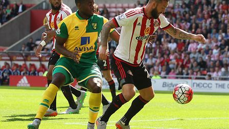 Sebastien Bassong of Norwich and Steven Fletcher of Sunderland in action during the Barclays Premier