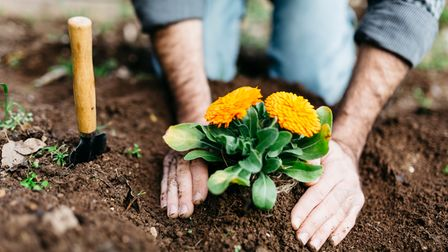 Gardening season is in full swing now that spring has arrived