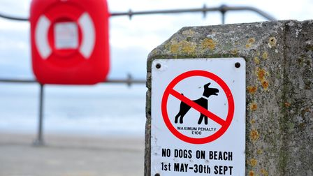 No dogs on beach sign, Lowestoft.