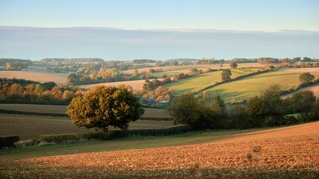 The Suffolk countryside